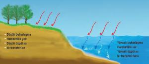 Şekil 1.36 Denizlerin ve karaların ısınma özellikleri farklıdır.