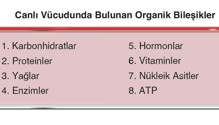 Canlı Vücudunda Bulunan Organik Bileşikler