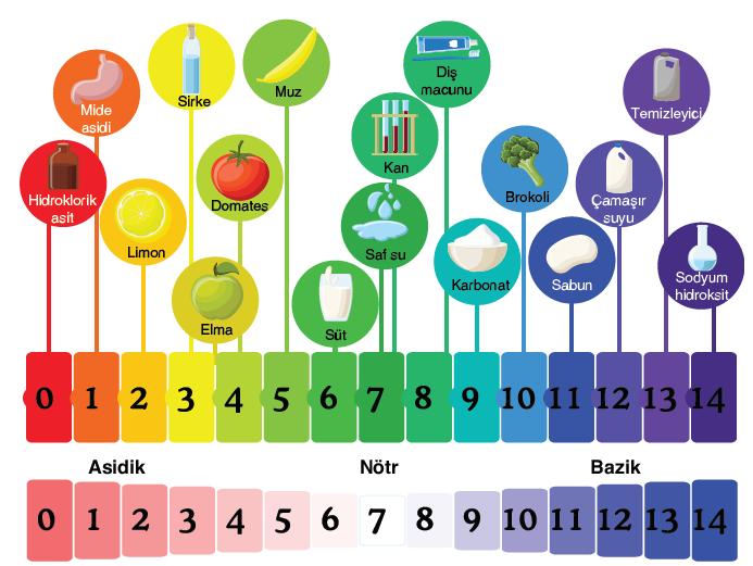 pH cetveli ve bazı maddelerin pH değeri