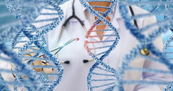 Görsel 1.47 Gen terapisinde hastalığa yol açan gen, sağlamı ile değiştirilir.