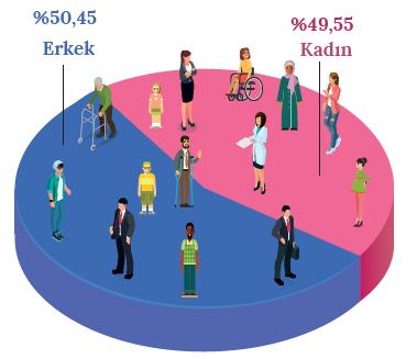Grafik 2.1 Dünya nüfusunun cinsiyet oranı (Dünya Bankası, 2015)