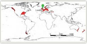 Harita 1.26 Ilıman okyanus ikliminin dağılışı