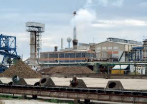 Görsel 2.120 Şeker fabrikaları, ham maddesi olan şeker pancarının ekim alanlarına yakın bölgelerde kurulur.