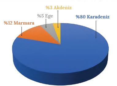 Grafik 2.13 Türkiye'de avlanan balıkların denizlere oranı (TÜİK)