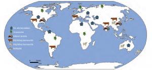 Harita 3.6 Dünya üzerinde önemli ham madde üretim alanları (Tümertekin E., Özgüç N., 2013)