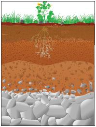 Toprağın yapısı