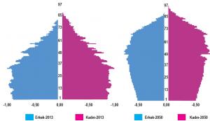 Türkiye'nin 2013'te ölçülen ve 2050'de sahip olması beklenen yaş piramitleri