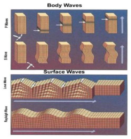 Cisim ve Yüzey Dalgaları